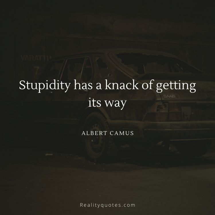 Stupidity has a knack of getting its way