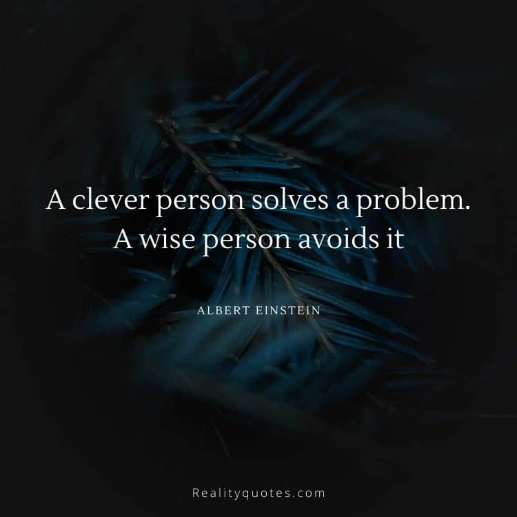 A clever person solves a problem. A wise person avoids it