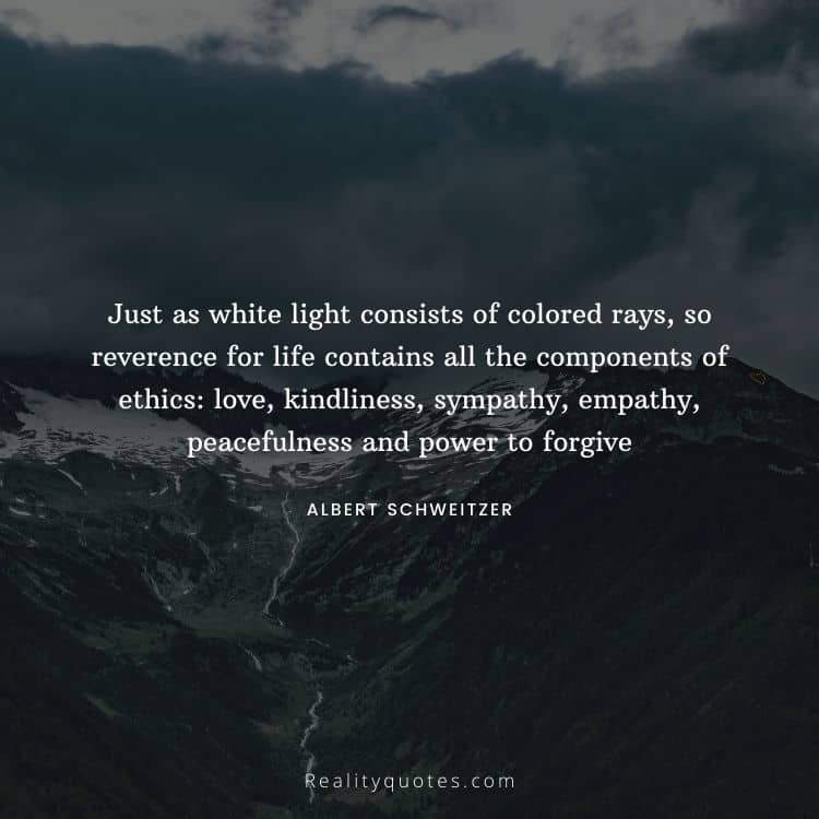 Just as white light consists of colored rays, so reverence for life contains all the components of ethics: love, kindliness, sympathy, empathy, peacefulness and power to forgive