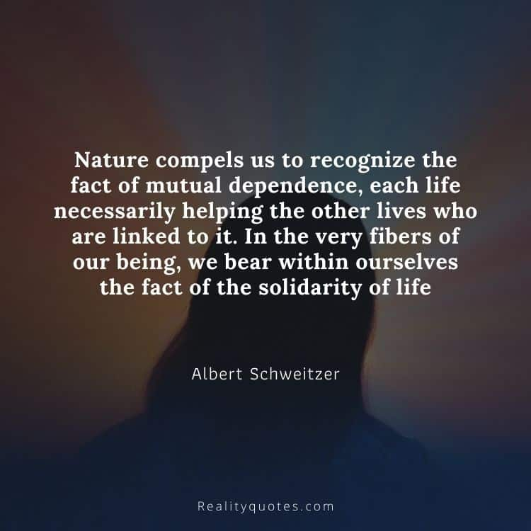 Nature compels us to recognize the fact of mutual dependence, each life necessarily helping the other lives who are linked to it. In the very fibers of our being, we bear within ourselves the fact of the solidarity of life