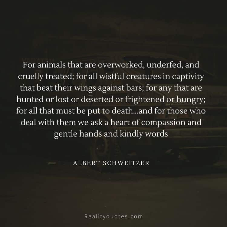 For animals that are overworked, underfed, and cruelly treated; for all wistful creatures in captivity that beat their wings against bars; for any that are hunted or lost or deserted or frightened or hungry; for all that must be put to death…and for those who deal with them we ask a heart of compassion and gentle hands and kindly words