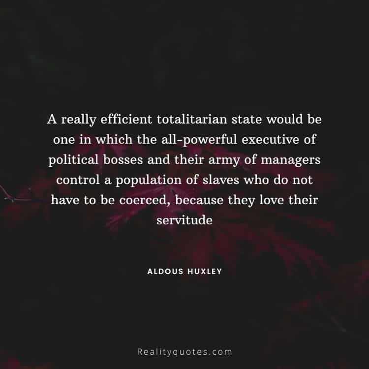 A really efficient totalitarian state would be one in which the all-powerful executive of political bosses and their army of managers control a population of slaves who do not have to be coerced, because they love their servitude