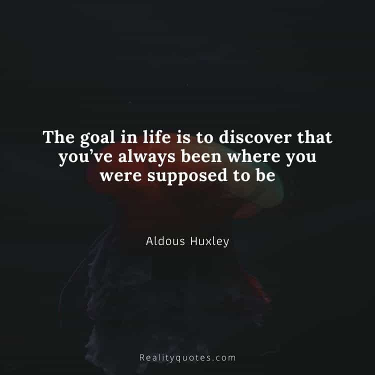 The goal in life is to discover that you've always been where you were supposed to be