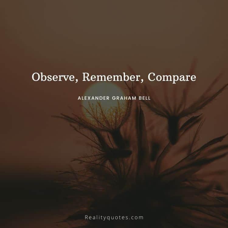Observe, Remember, Compare