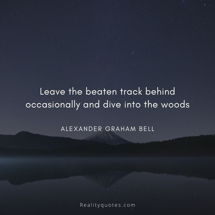 Leave the beaten track behind occasionally and dive into the woods