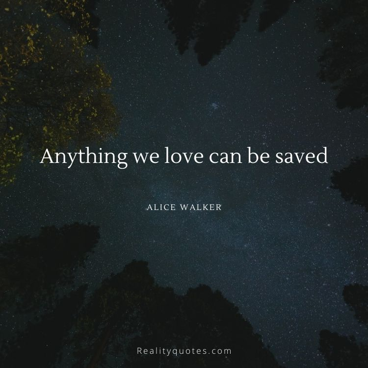 Anything we love can be saved