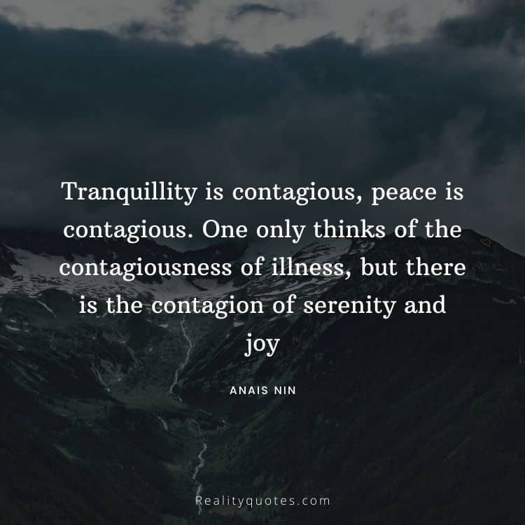 Tranquillity is contagious, peace is contagious. One only thinks of the contagiousness of illness, but there is the contagion of serenity and joy