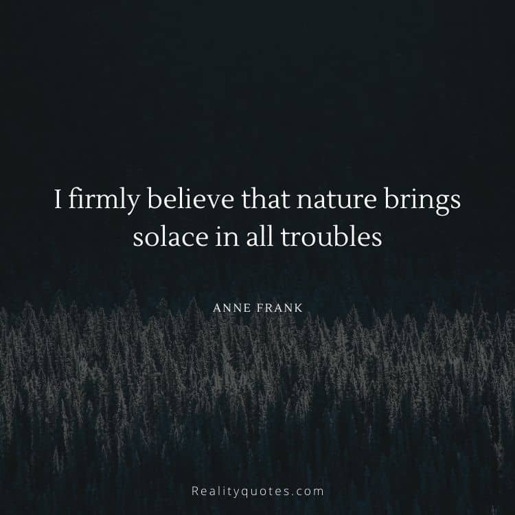 I firmly believe that nature brings solace in all troubles