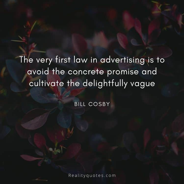 The very first law in advertising is to avoid the concrete promise and cultivate the delightfully vague