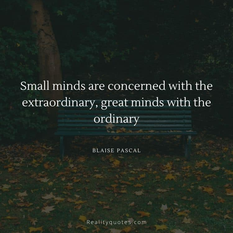 Small minds are concerned with the extraordinary, great minds with the ordinary
