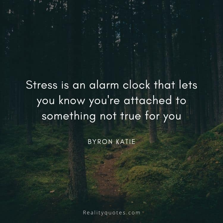 Stress is an alarm clock that lets you know you're attached to something not true for you